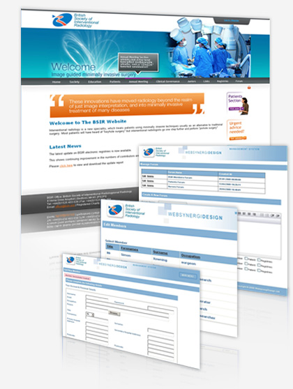 BSIR Website and Bespoke CMS